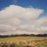 Wolke im Licht