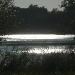 Schwindendes Licht